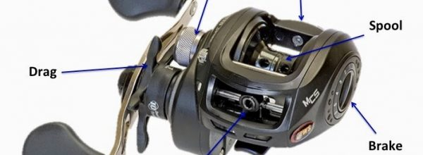 Fishing Reel Repair | SharpReel