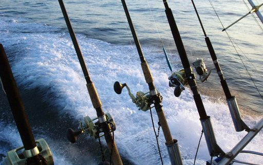 Fishing Reel Repair Services