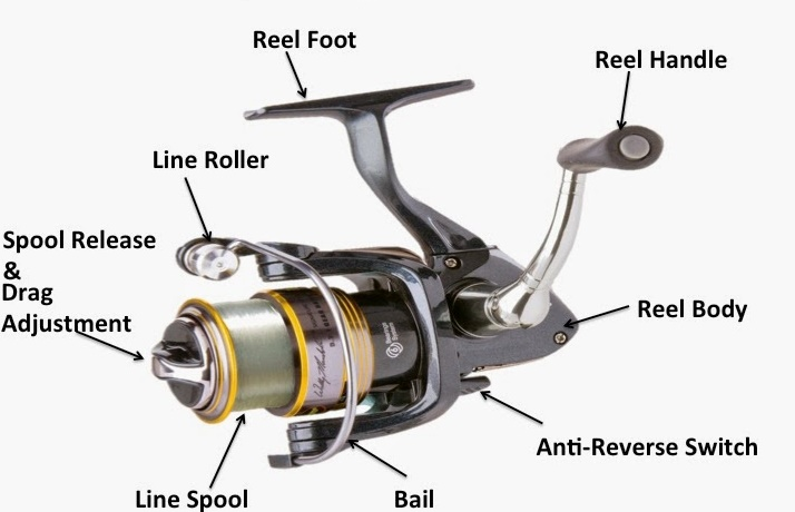 Knife Sharpen and Fishing Reel Repair by SharpReel